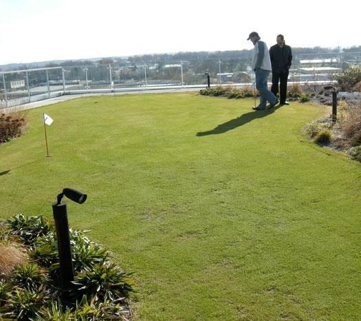 Termoizolatie si hidroizolatie a acoperisurilor cu vegetatie / jardiniere / gradini