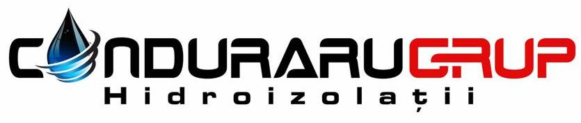 logo_blog1
